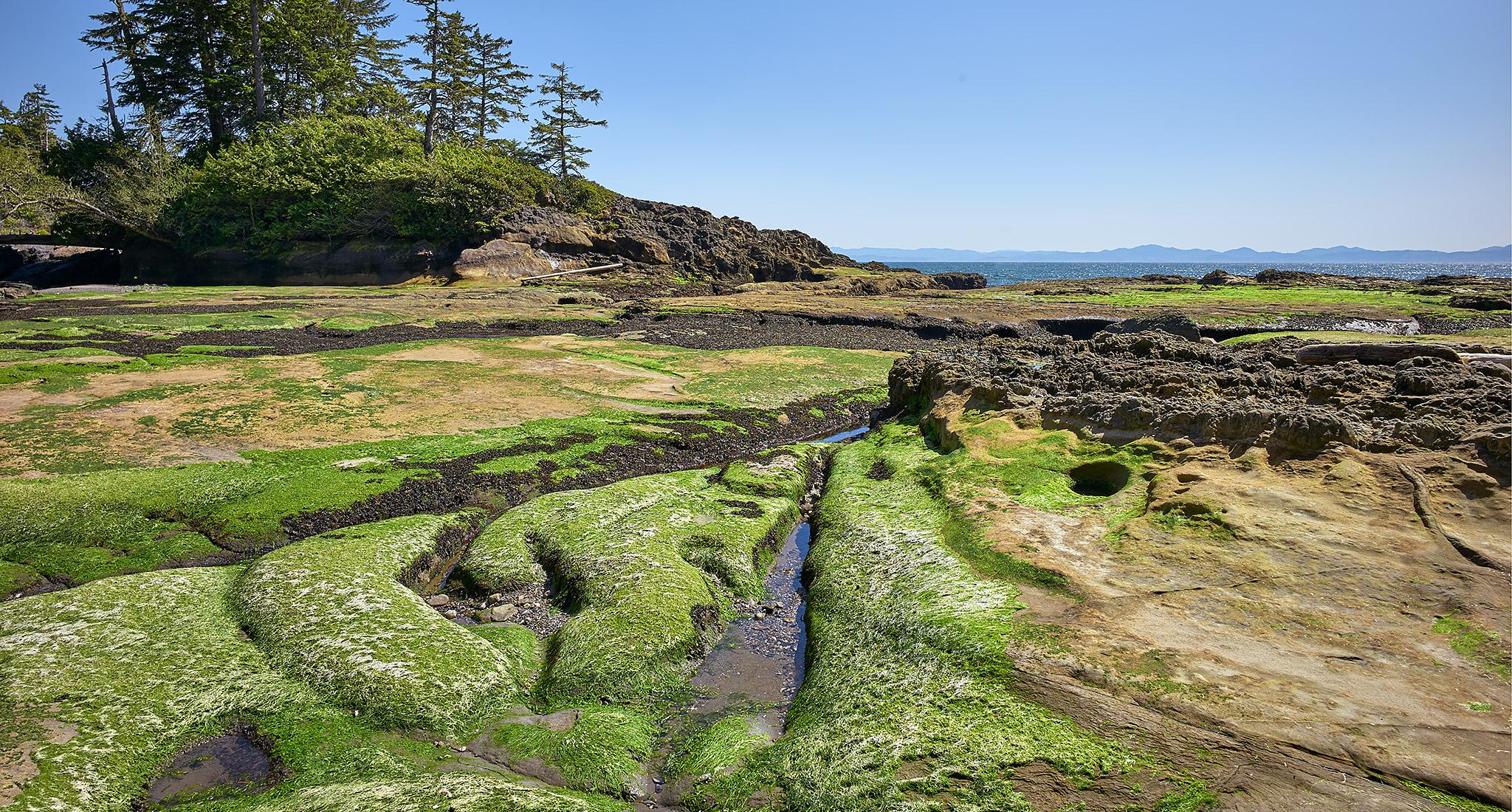 West Coast Vancouver Island © johncameron.ca