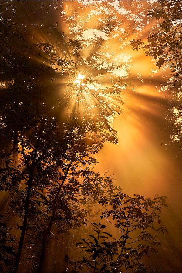 November Sunset © johncameron.ca