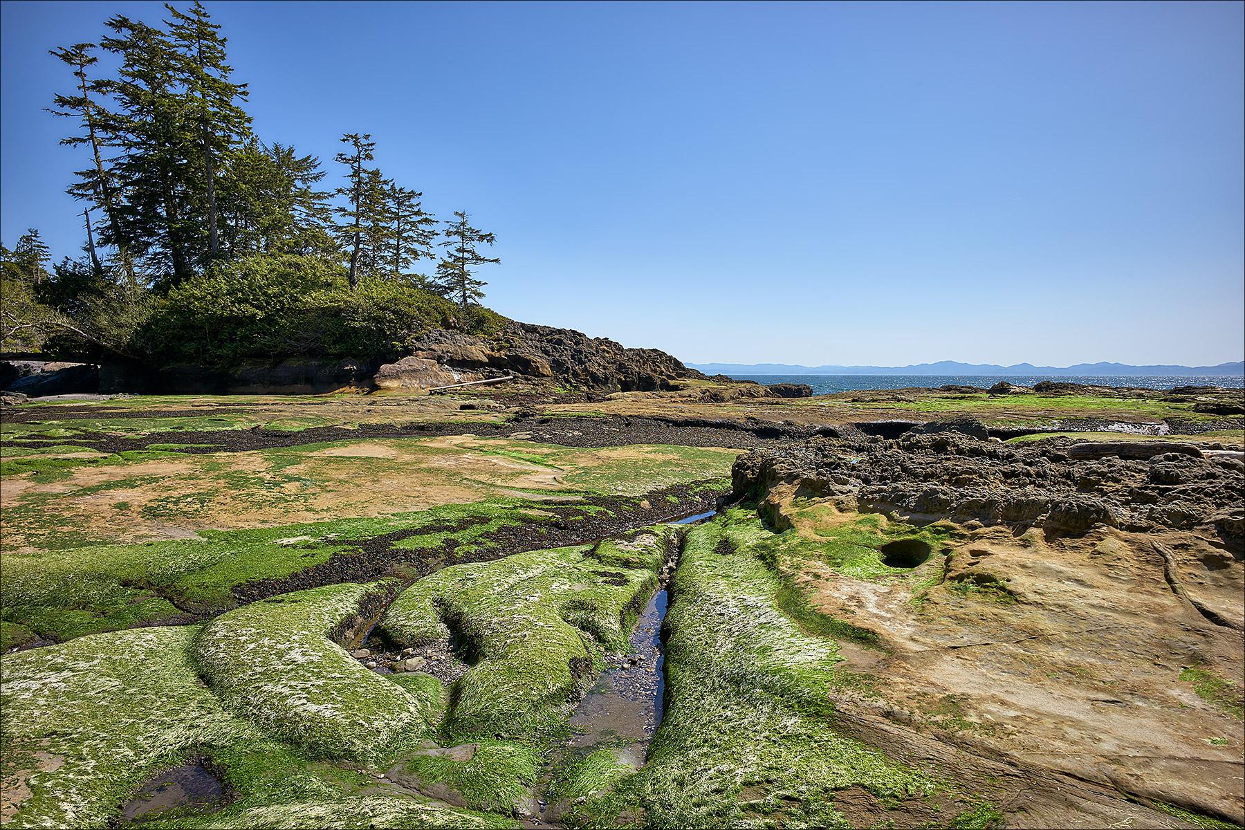 Juan de Fuca Marine Trail ©johncameron.ca