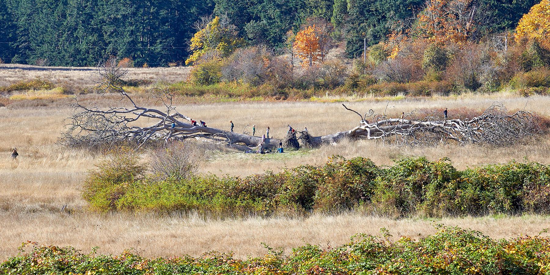 Nature Class Recess ©johncameron.ca