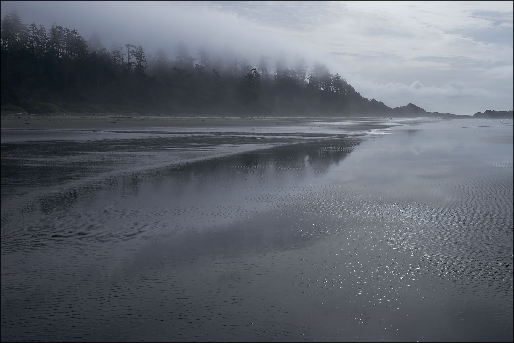 early morning fog at Pacific Rim National Park ©johncameron.ca