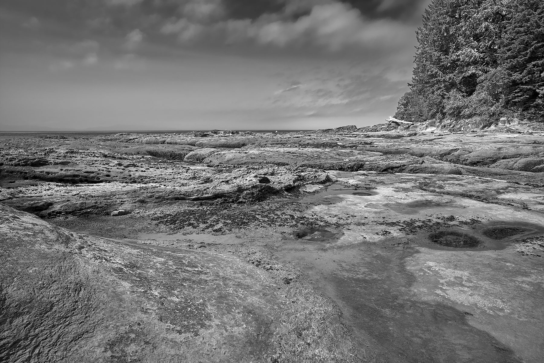 Tom Baird Beach