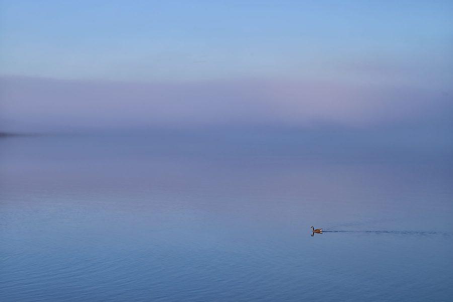 Untitled © johncameron.ca