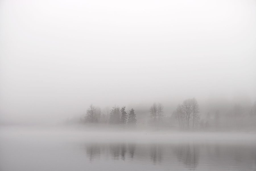 Winter Trees © johncameron.ca