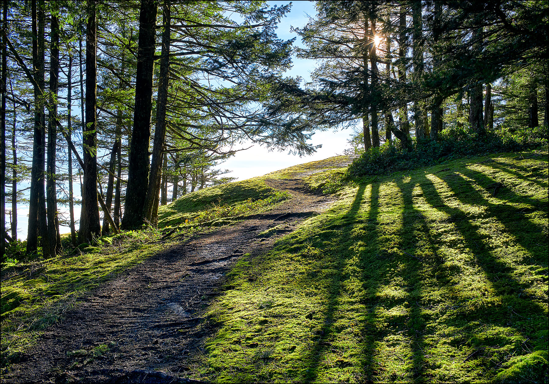 Into the Light, a Mount Maxwell Hike ©johncameron.ca